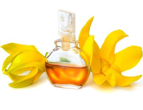 масло иланг иланг применение в косметолгии
